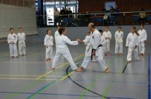Foto:Karate-Do-Kwai