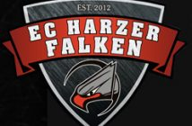 Logo Harzer Falken (Screen HP)